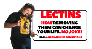 lectin free diet for lupus Archives | The Gut Ninja